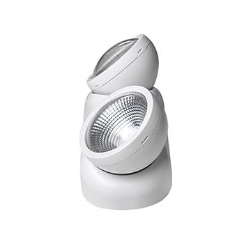 Twin Head LED Emergency Light